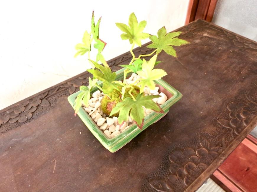 和室。小物と盆栽。BB Style~SAKIGAKE~21