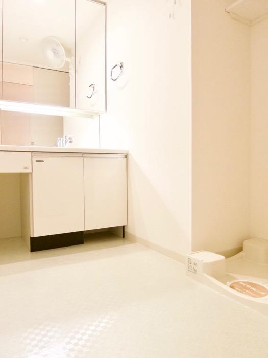 清潔感あふれるサニタリー&バスルーム。コンシェルジュがいる賃貸マンション。ロイヤルパークスERささしま1