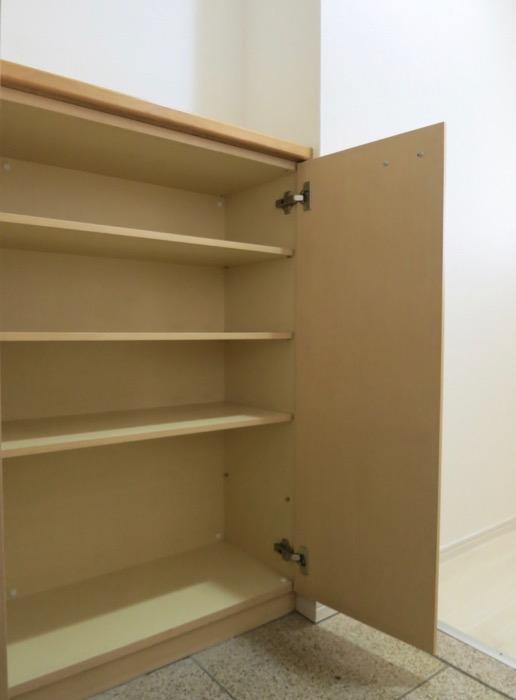 メイプルカラーの玄関 R-COURT 泉 1102号室R-COURT 泉 1102号室3
