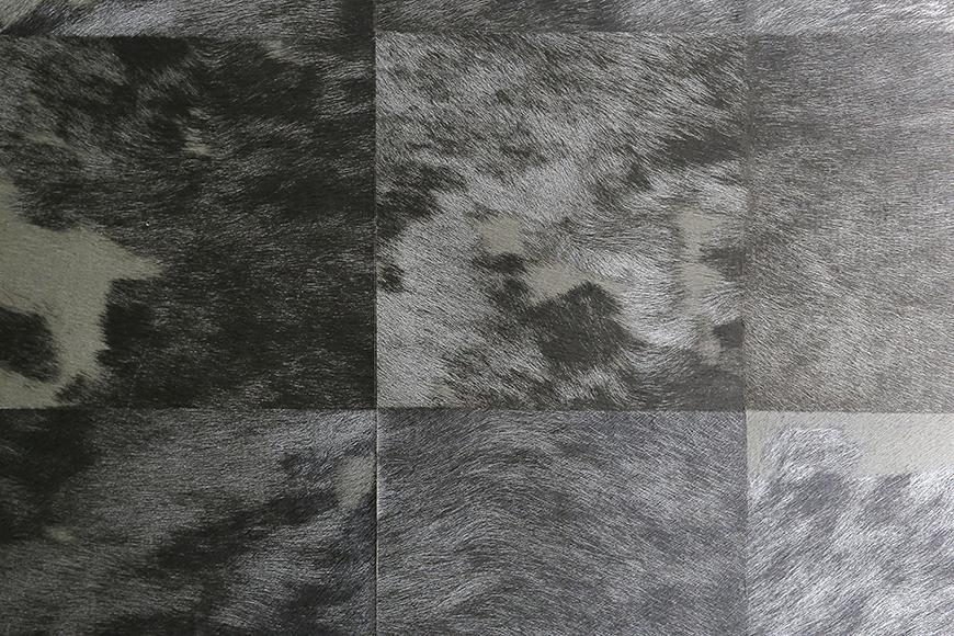 【ビアンカーサ】701号室_廊下の壁紙_MG_8691