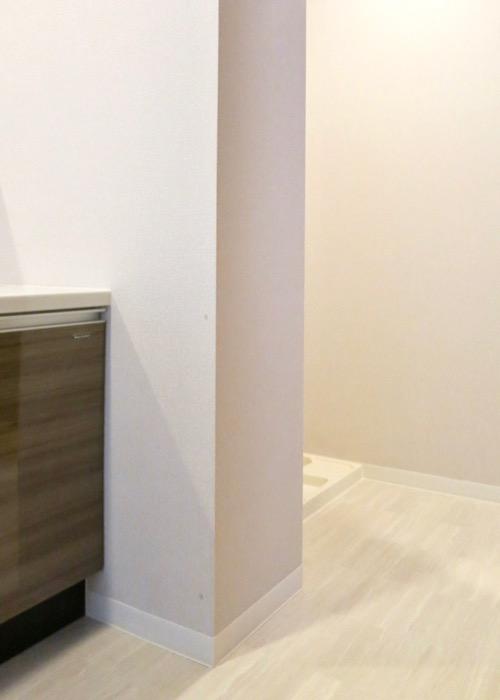 サニタリールーム。出入り口が2つ。広々してます。 ASKA HILLS 4