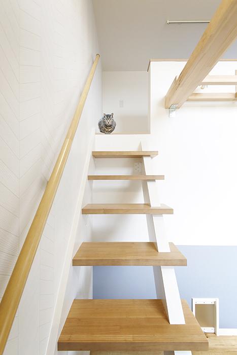 西尾市【モフズヴィラ(Mofz Villa Imagawa)】106号室_洋室からロフトへの階段_MG_6245