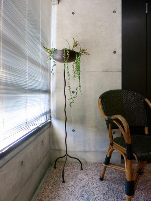 コンクリート打ちっ放しのクールなお部屋。6帖(サンルーム付き)。ARK HOUSE 南館 3A 何もかもが魅力的な創造空間。12