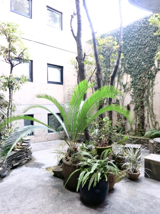 外観・共用 コンクリートハウス 風か吹き抜ける美しい要塞。218 HOUSE 2D号室10