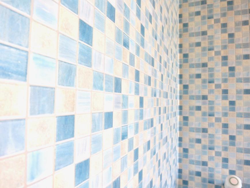 1F サニタリー&バストイレ。 和洋折衷 広い和室とスヌーピー オフィス・ペット可 城主町貸家5