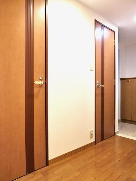 玄関・廊下 ザ・センチュリーステイツ506号室4