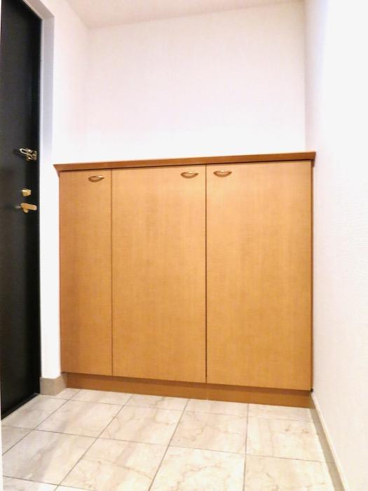 玄関・廊下 ザ・センチュリーステイツ506号室1