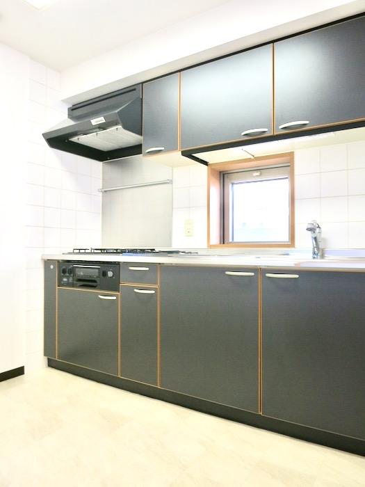 キッチン ザ・センチュリーステイツ506号室6