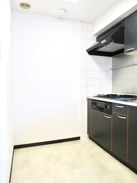 キッチン ザ・センチュリーステイツ506号室3