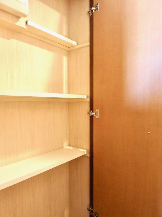 玄関・廊下 ザ・センチュリーステイツ506号室7