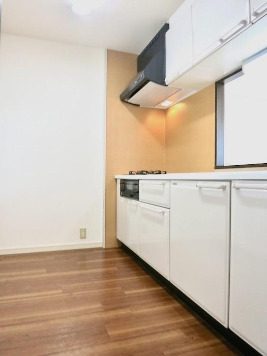 キッチン ビラ三秀山中505号室0