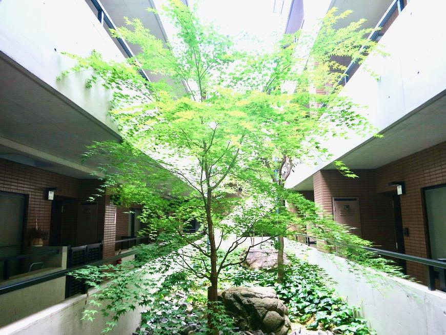 玄関・外観・共用 ビラ三秀山中505号室2