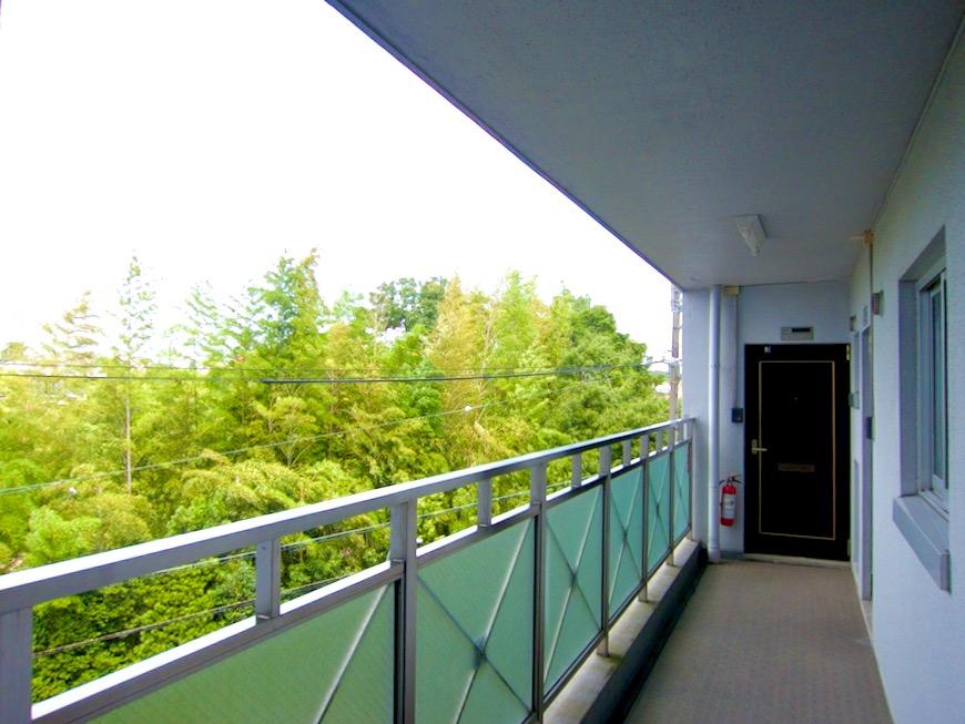 ● 外観・共用 南山ビル403号室00002