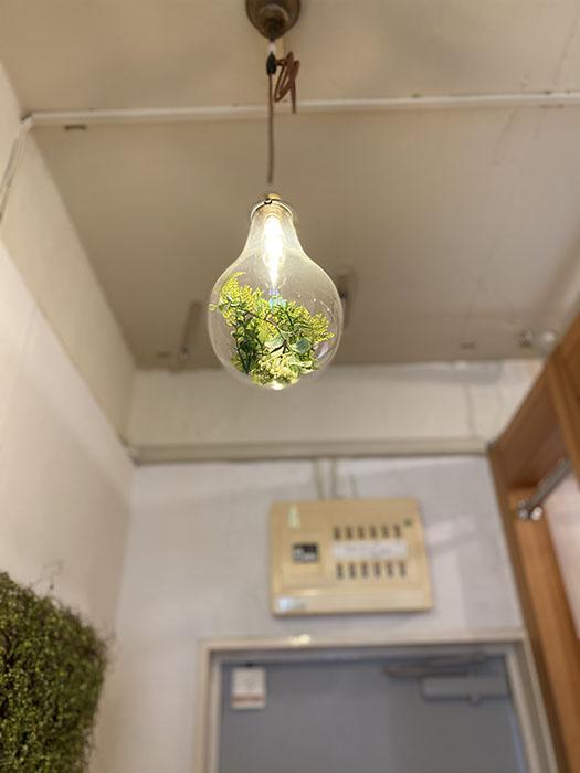 神田ヴィレッジ名東B-1照明