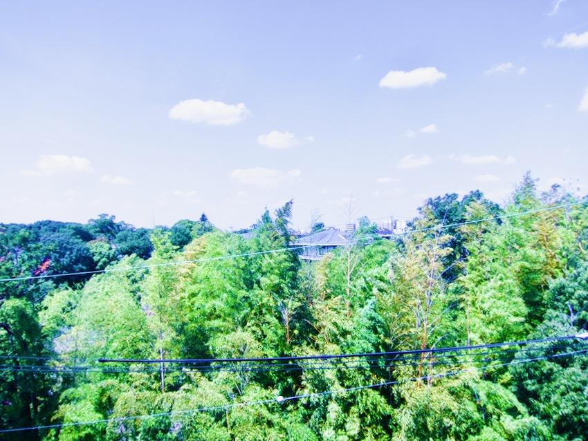 窓からの眺め 南山ビル501号室南山ビル501号室IMG_0393