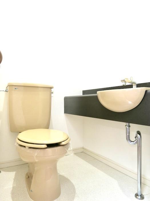 トイレ ビラ三秀山中505号室0