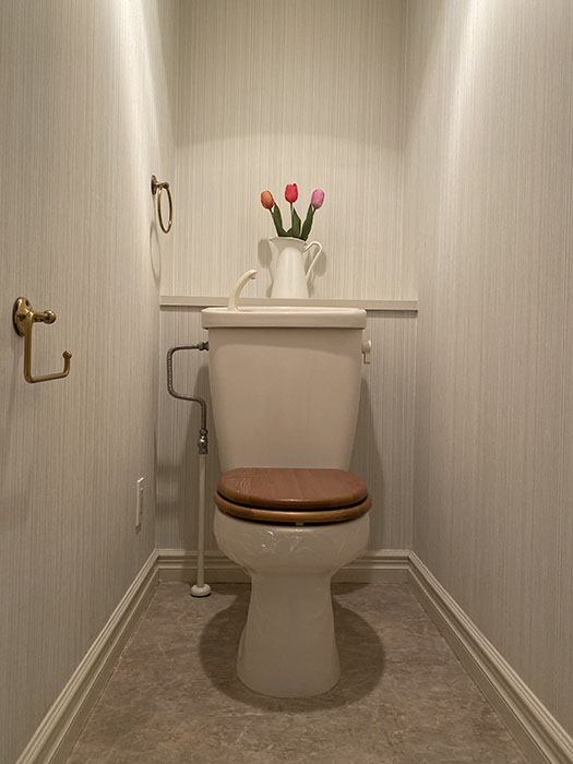 MA MAISON 弐番館 401号室トイレ