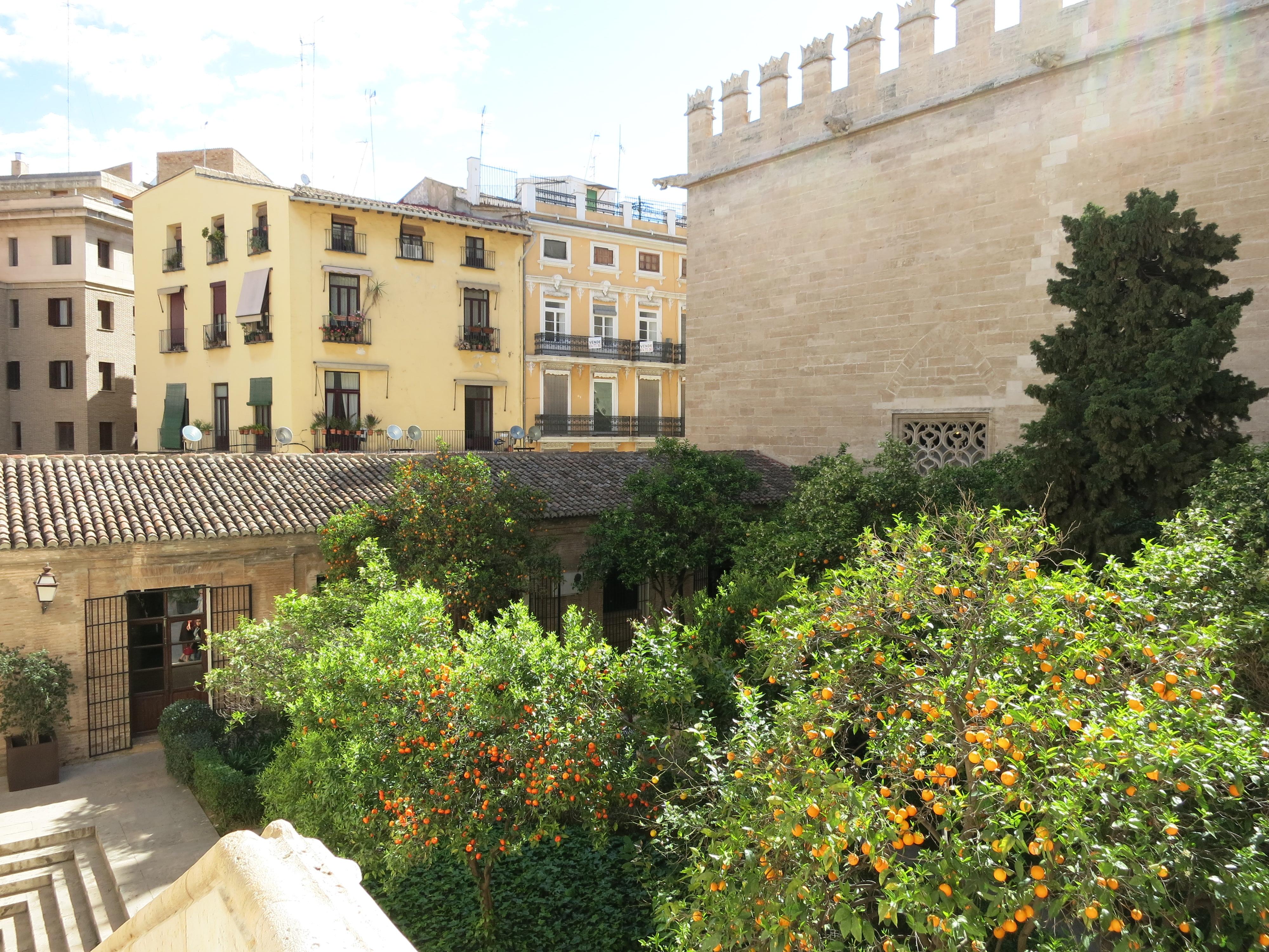IMG_4947_オレンジが植えられている街並み。ーバレンシアの世界遺産:ラ・ロンハ・デ・ラ・セダよりー