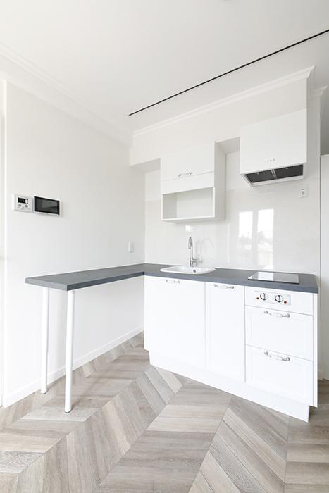 キッチンはシンプルなタイプですが、カウンターがついていて、食事をするスペースにも使えます。_MG_5079