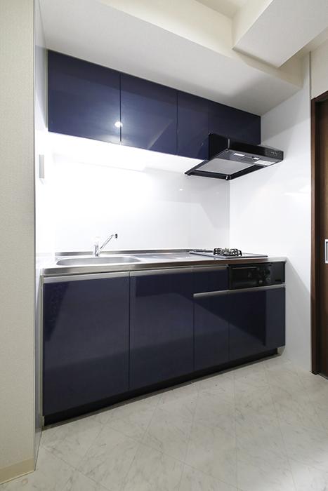 【吉川屋ビル】_5D号室_キッチン周り_システムキッチンです_MG_2569