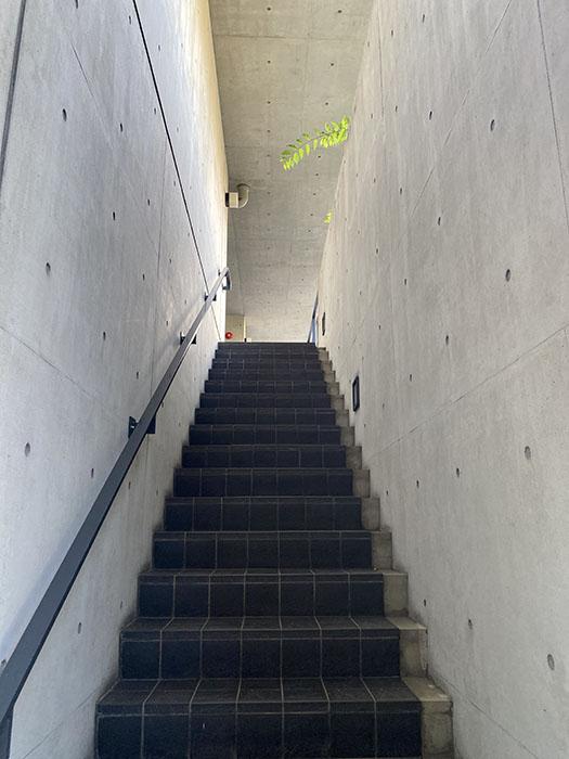 NESPALD EVE 階段