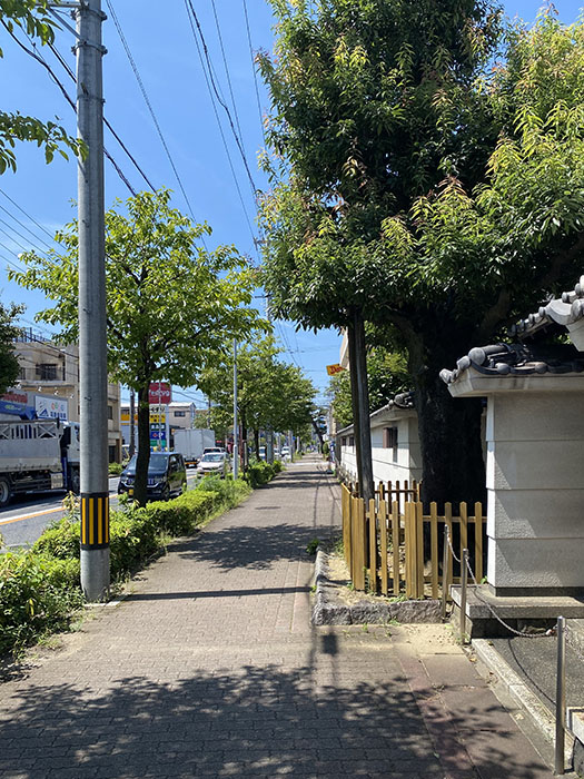 CaT WALK 道
